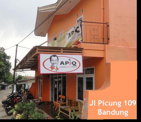 APIQ Picung 109