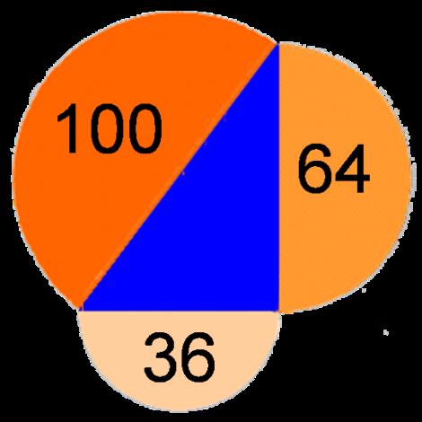 Belajar matematika segitiga APIQ
